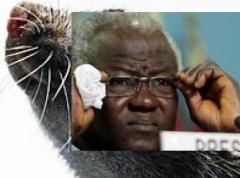 Ernest Bai Koroma - the puppet master at State House bent on engulfing Sierra Leone into another round of extreme violence and disorder using all means necessary.