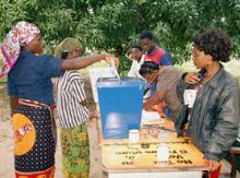 Women voters in Mozambique